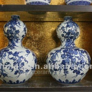 Blue and White Porcelain vase RYVD01