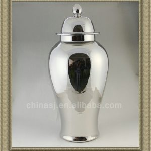 WRYNQ22 beautiful silver ceramic jar with lid