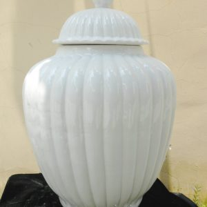 "WRYMA34 21.5"" White melon Ginger jar"