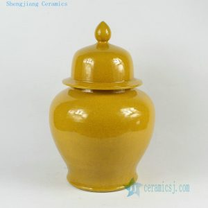 RYDB51 12inch Ceramic Plain Ginger Jars