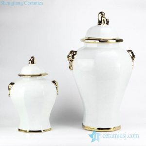 RYNQ166-C European style simple white color golden line pleated ceramic home decor jar