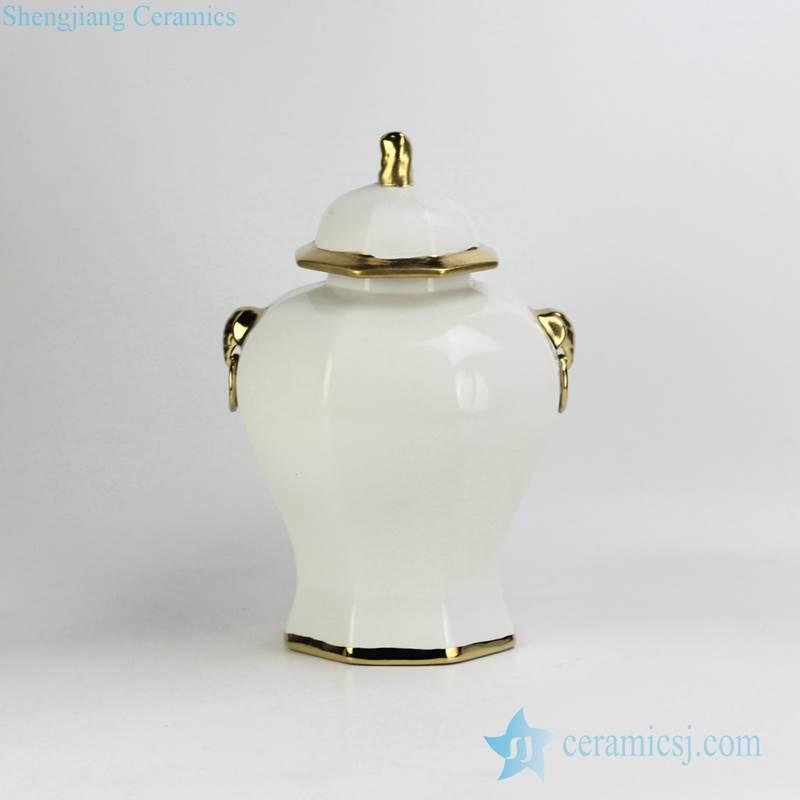 RYNQ166-C/D Solid color golden line gilded unique matt finish porcelain home decor jar with lion knob and ring handle