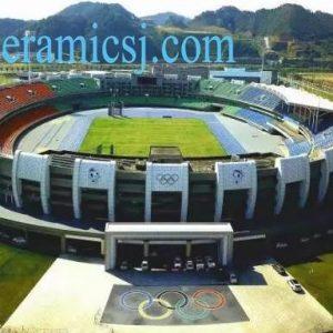15th Jiangxi Provinciacl Sports Meeting Holds in Jingdezhen
