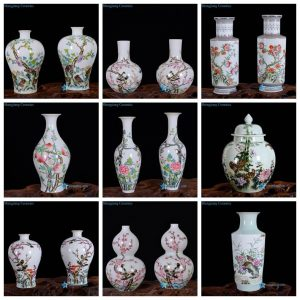 RZNF02-12 Bright colorful delicate hand painted Qing Dynasty reproduction porcelain vase