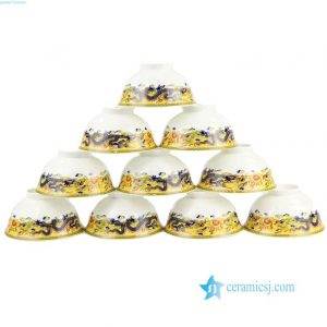 RZHF06-A Bone china made dragon pattern porcelain dinner ware set