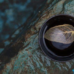 A Legend Story of Leaf in Ceramic Cup