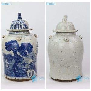 RZEY12-H/I Jingdezhen blue and white hand drawing porcelain jar with lion knob