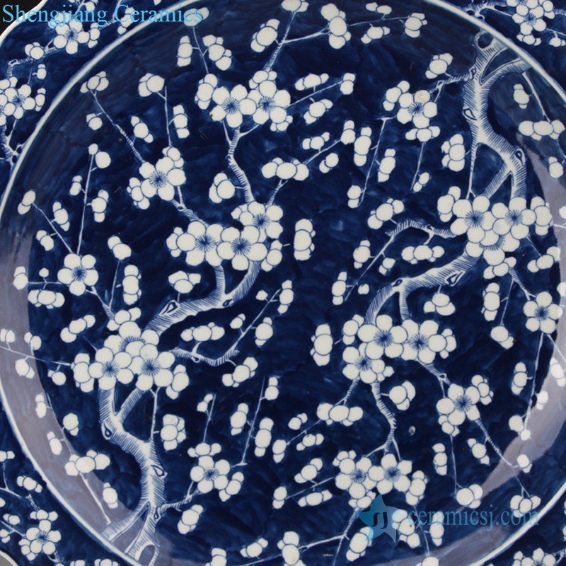 antique decorative ceramic plate