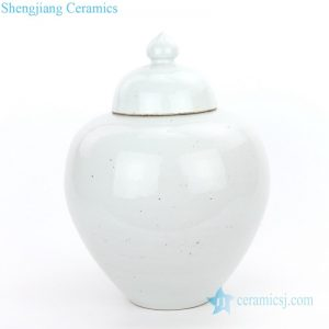 RZPI05-A Chinese monochrome storage jar with candle knob lid