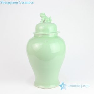 RYKB115-E Shinny surface lion apex green porcelain jar