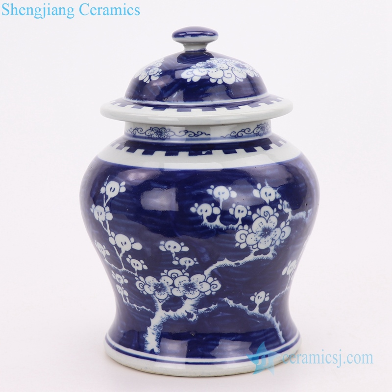 Blue and white Chinese style storage jar front