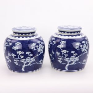 RZPi24-F Beautiful jar Chinese style jingdezhen porcelain decoration appreciate blue and white porcelain blue and white ice plum with lid altar jar