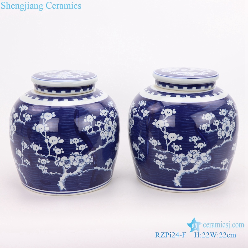 Beautiful jar Chinese style jingdezhen porcelain front view