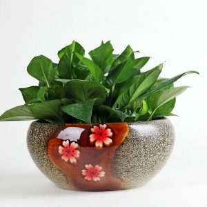 Shengjiang handmade colored glazed ceramic flowerpot