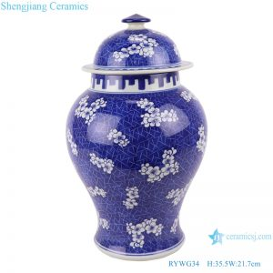 RYWG34 jingdezhen hand painted ceramics food storage for living room decoration blue and white porcelain jar