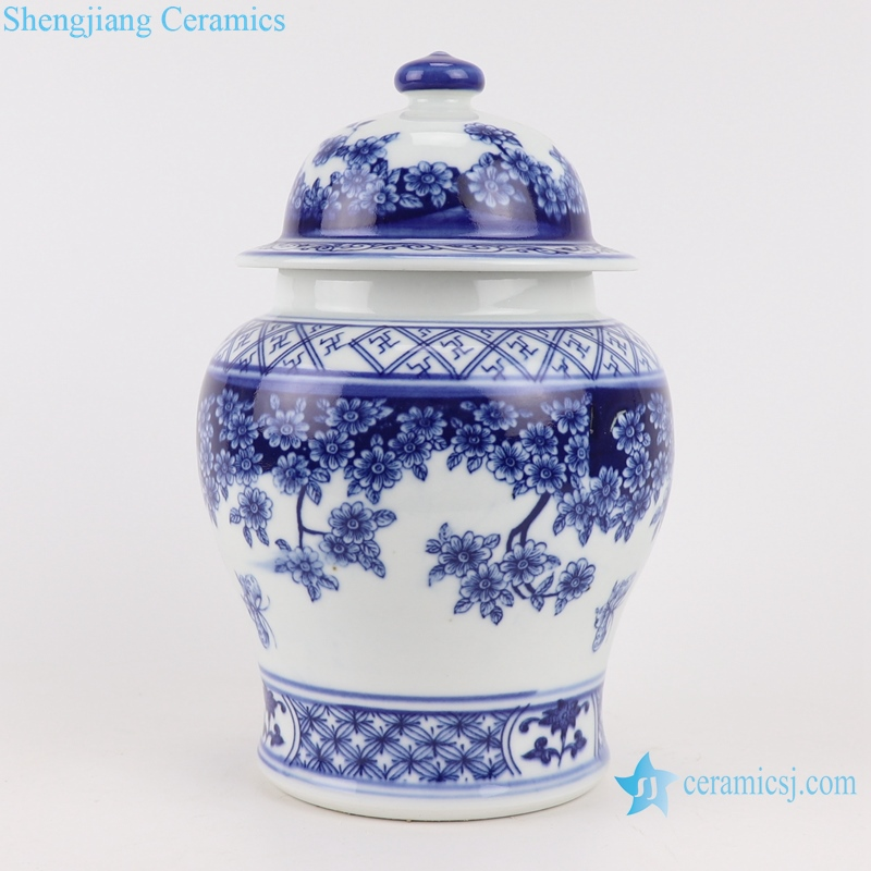 RZBO19 Blue and white butterfly pattern general pot with lid