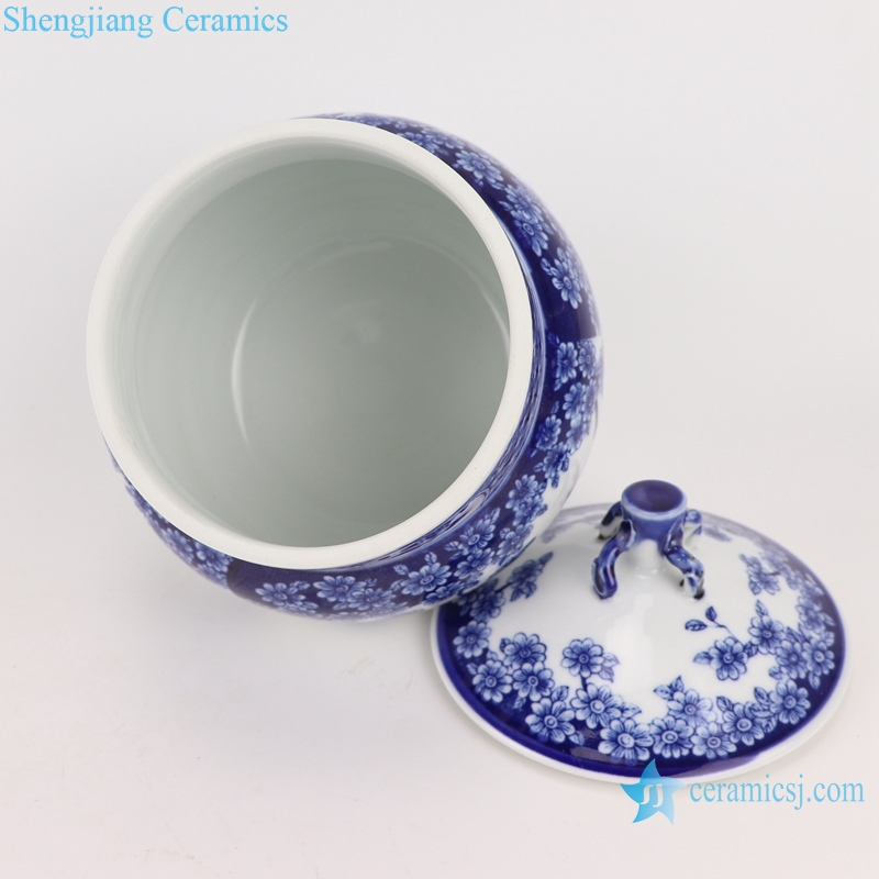 RZBO20 Blue and white butterfly tea canister storage pot with lid
